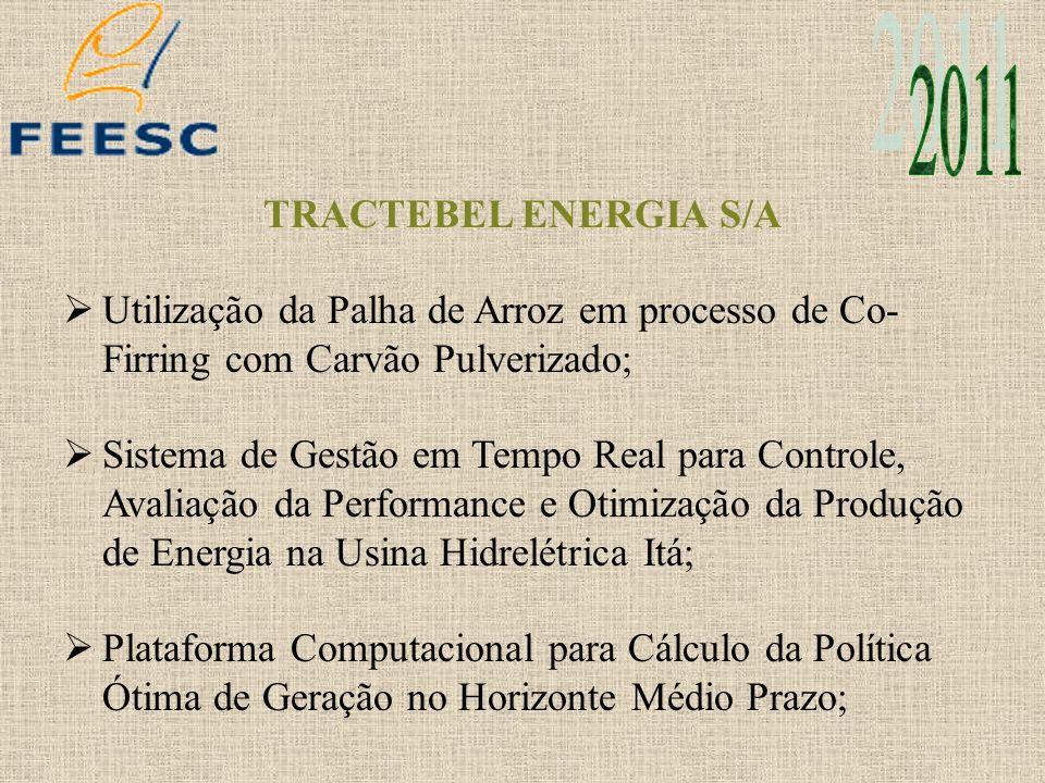 2011 TRACTEBEL ENERGIA S/A. Utilização da Palha de Arroz em processo de Co-Firring com Carvão Pulverizado;