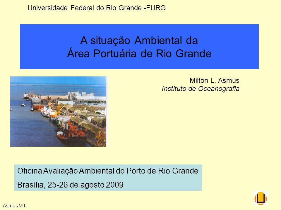 A situação Ambiental da Área Portuária de Rio Grande