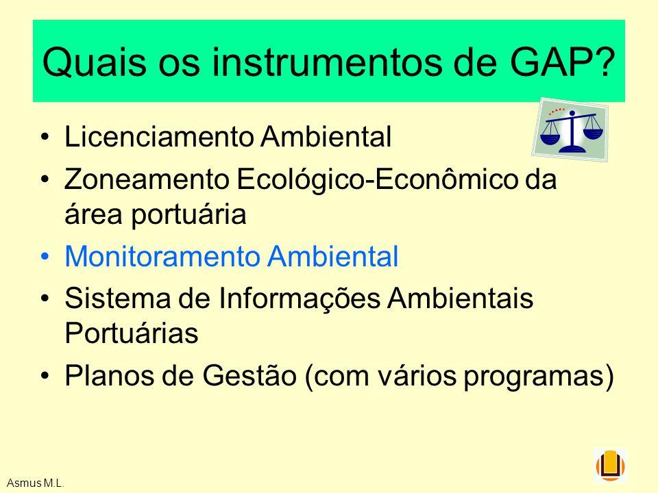 Quais os instrumentos de GAP