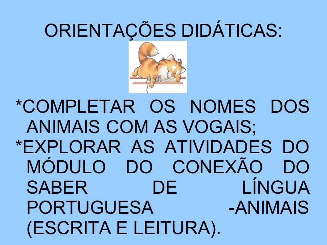 ORIENTAÇÕES DIDÁTICAS: