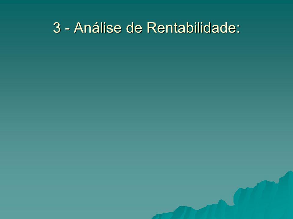 3 - Análise de Rentabilidade: