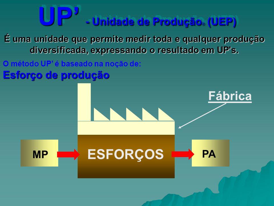 UP' - Unidade de Produção© (UEP)