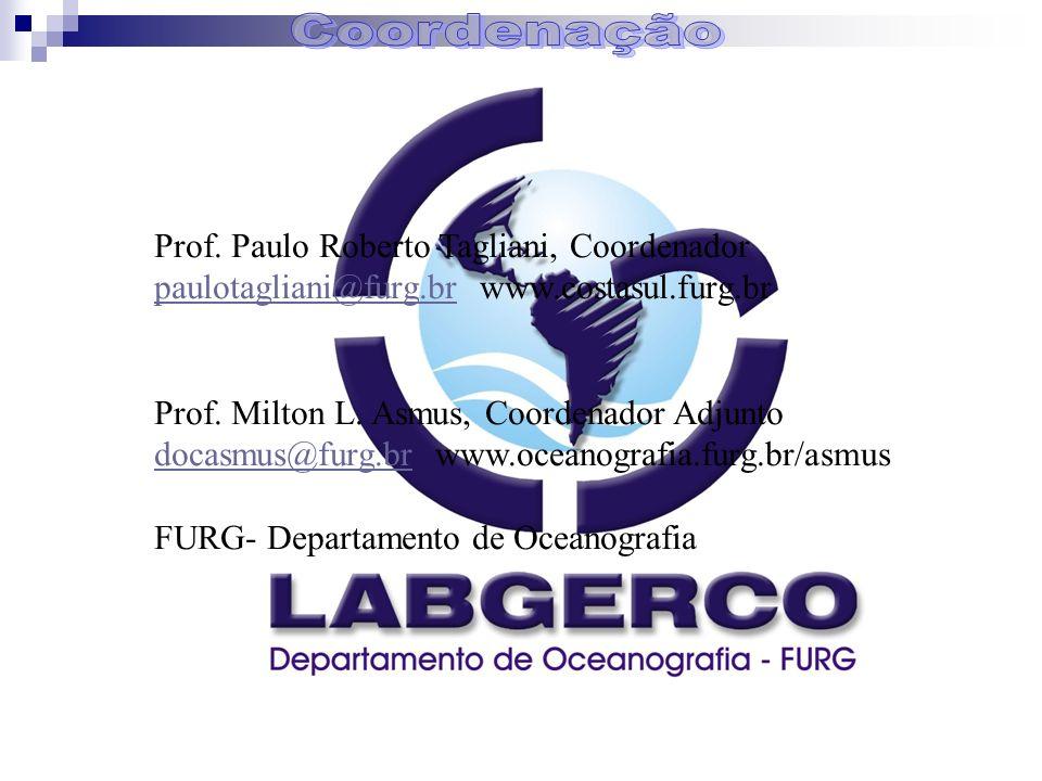 Prof. Paulo Roberto Tagliani, Coordenador