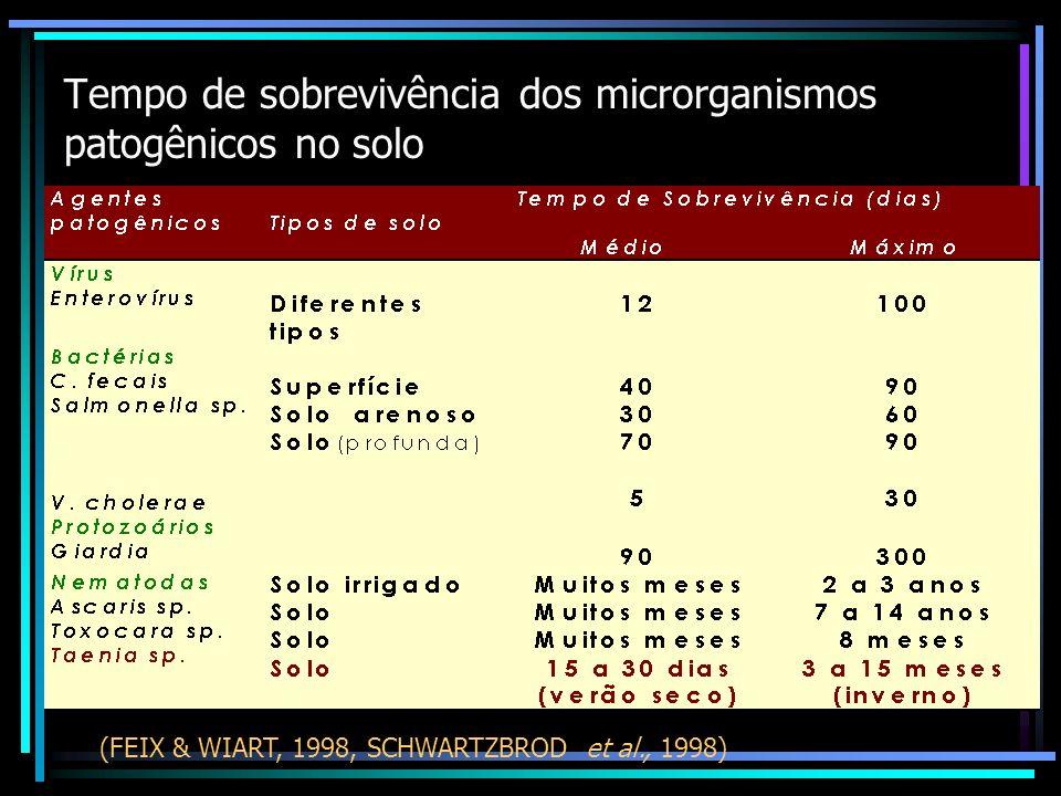 Tempo de sobrevivência dos microrganismos patogênicos no solo