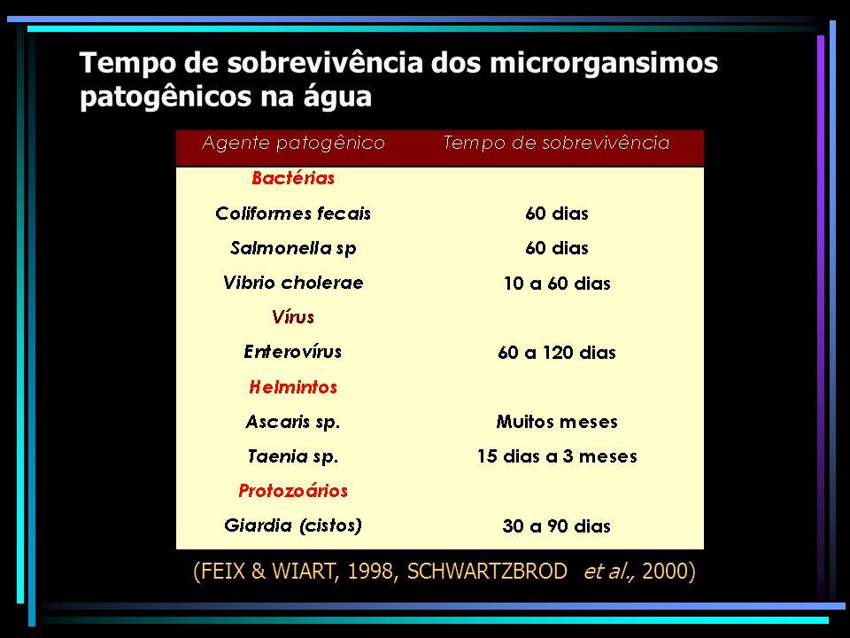 Tempo de sobrevivência dos microrgansimos patogênicos na água