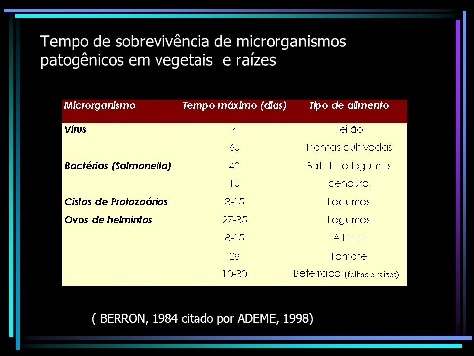Tempo de sobrevivência de microrganismos patogênicos em vegetais e raízes