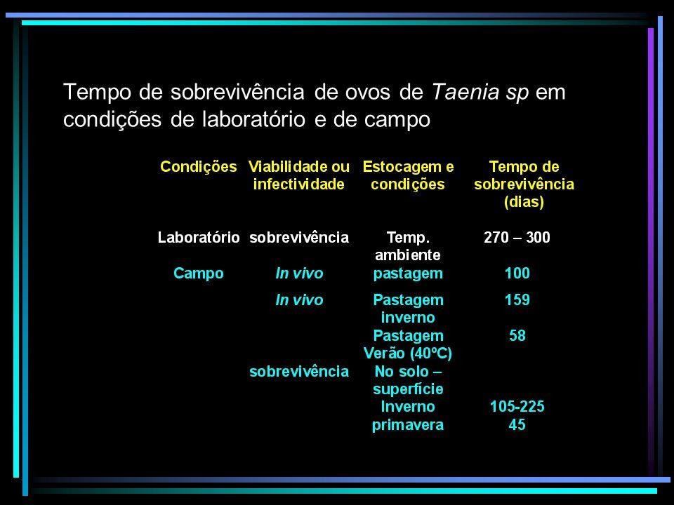 Tempo de sobrevivência de ovos de Taenia sp em condições de laboratório e de campo