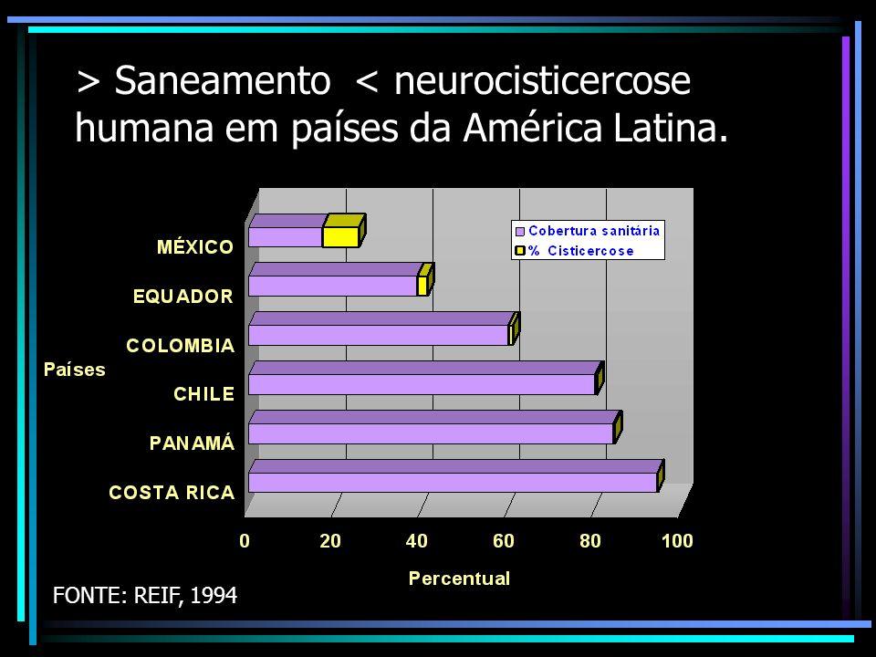 > Saneamento < neurocisticercose humana em países da América Latina.