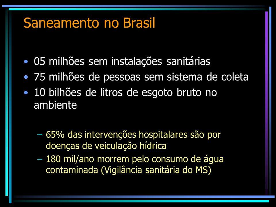Saneamento no Brasil 05 milhões sem instalações sanitárias