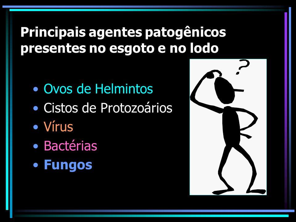 Principais agentes patogênicos presentes no esgoto e no lodo