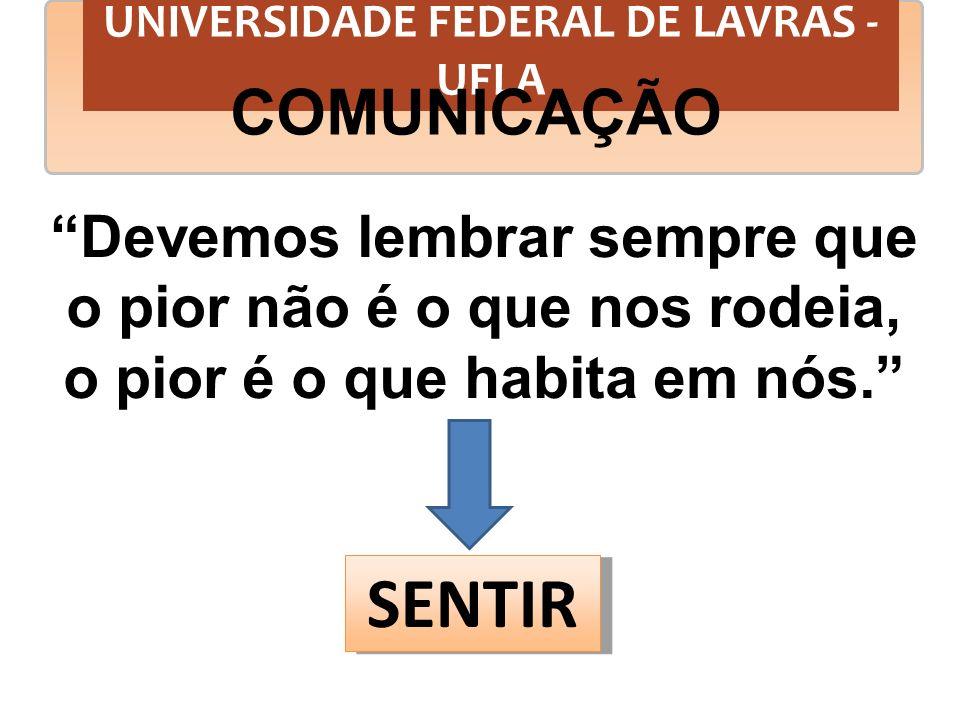 UNIVERSIDADE FEDERAL DE LAVRAS - UFLA