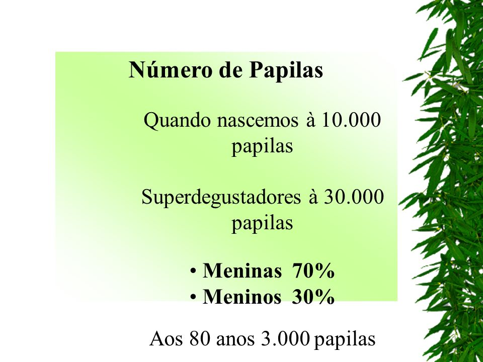 Número de Papilas Quando nascemos à 10.000 papilas