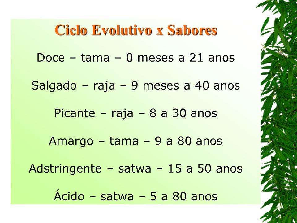 Ciclo Evolutivo x Sabores