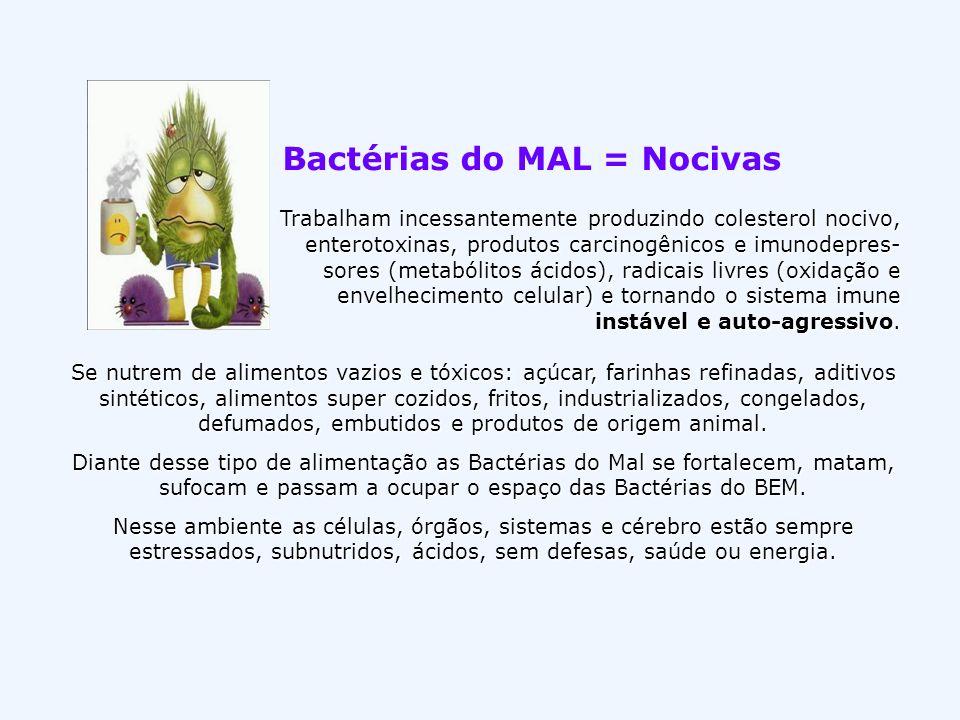 Bactérias do MAL = Nocivas