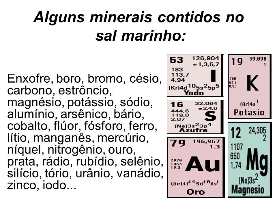 Alguns minerais contidos no sal marinho: