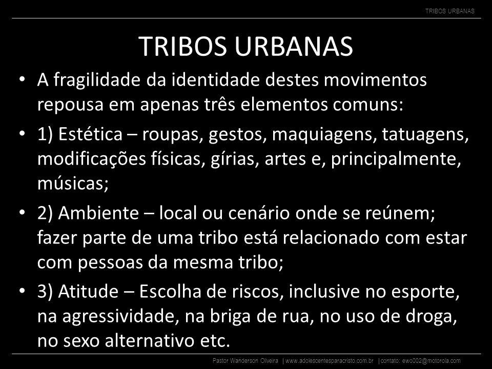 TRIBOS URBANAS A fragilidade da identidade destes movimentos repousa em apenas três elementos comuns: