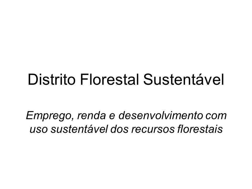 Distrito Florestal Sustentável