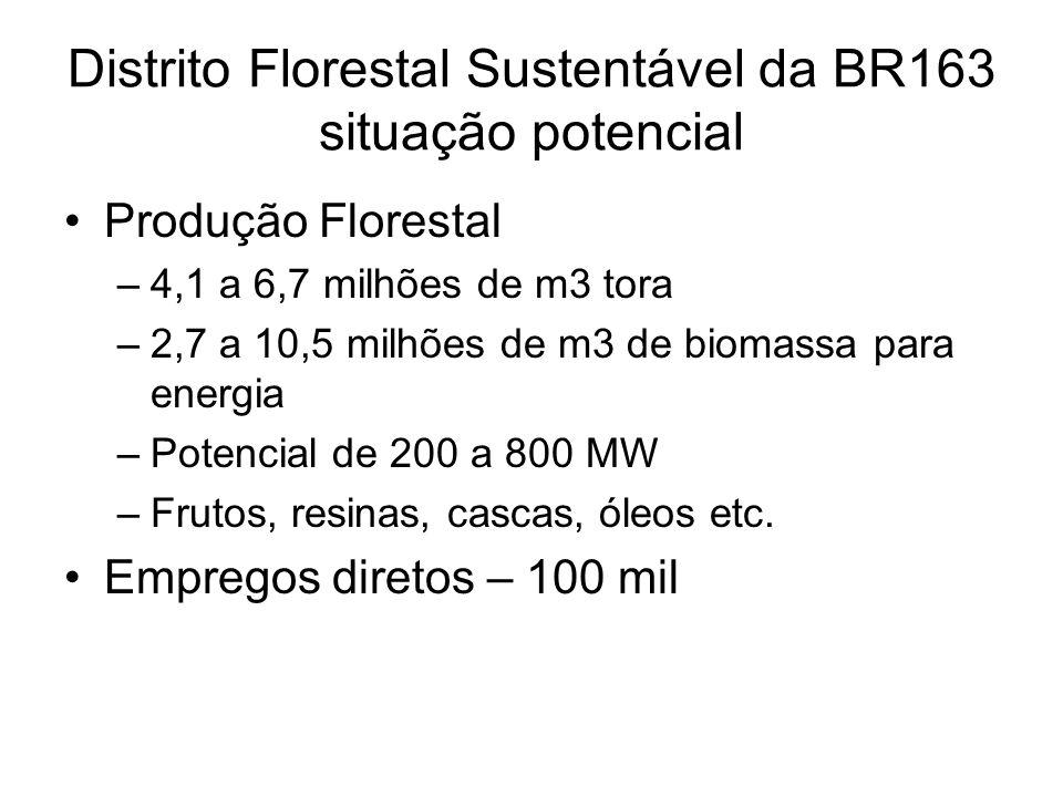 Distrito Florestal Sustentável da BR163 situação potencial