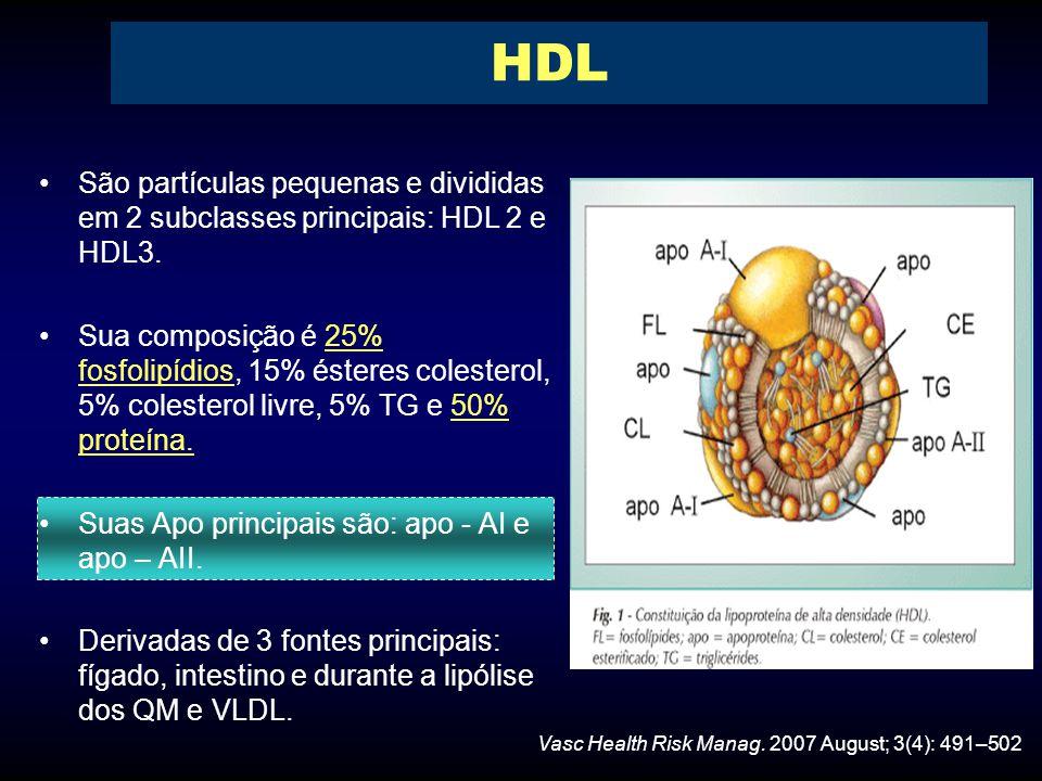 HDL São partículas pequenas e divididas em 2 subclasses principais: HDL 2 e HDL3.