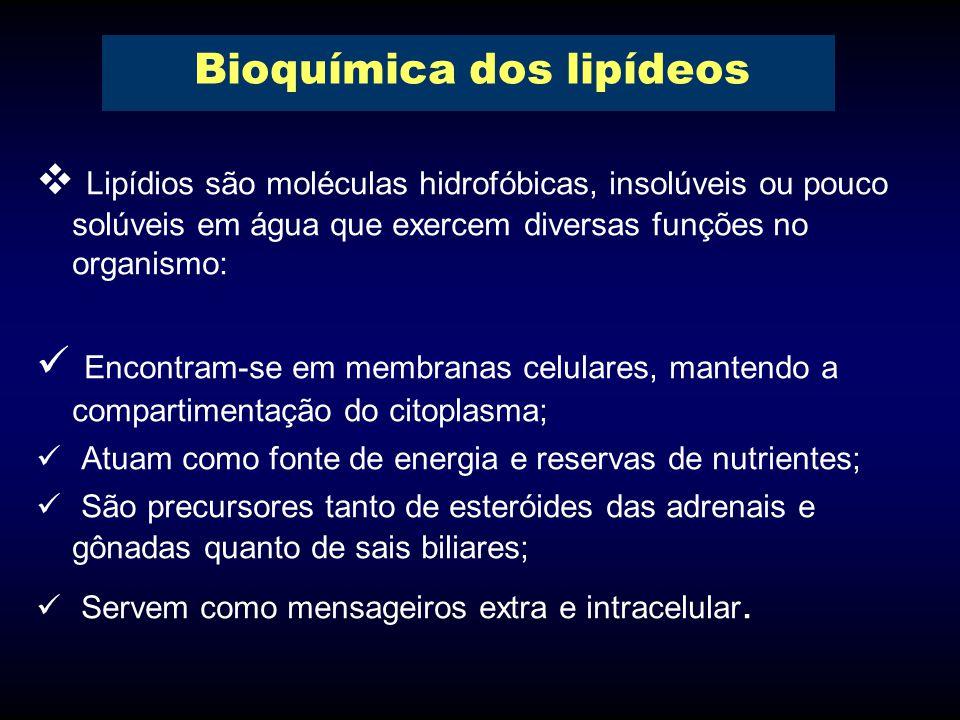 Bioquímica dos lipídeos