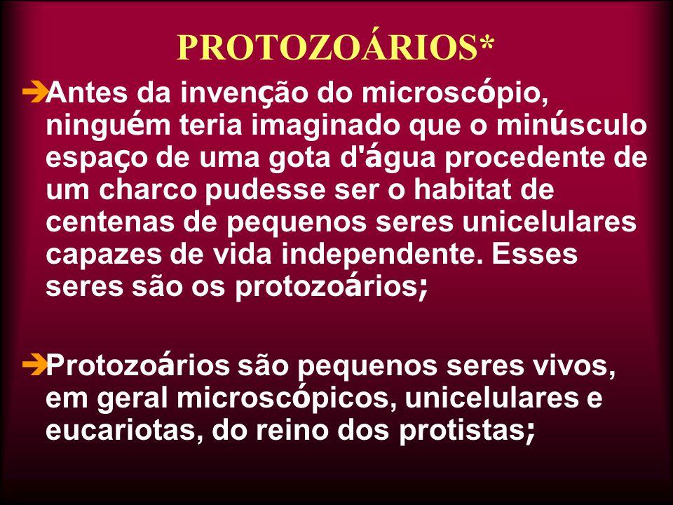PROTOZOÁRIOS*