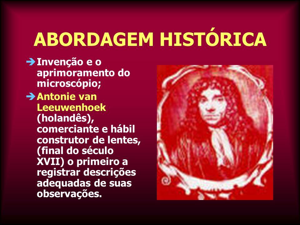 ABORDAGEM HISTÓRICA Invenção e o aprimoramento do microscópio;