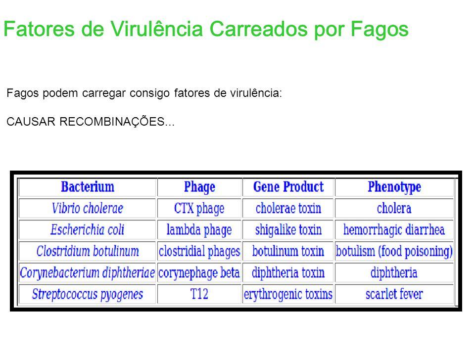 Fatores de Virulência Carreados por Fagos