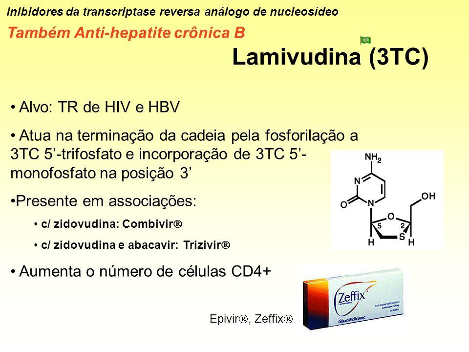 Lamivudina (3TC) Também Anti-hepatite crônica B Alvo: TR de HIV e HBV