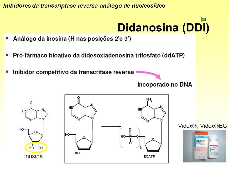 Inibidores da transcriptase reversa análogo de nucleosídeo