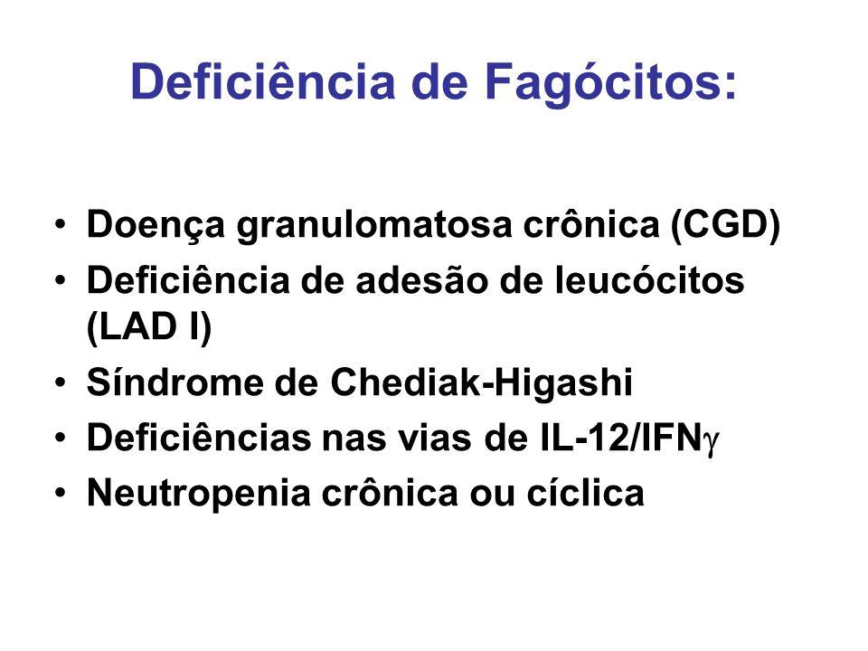 Deficiência de Fagócitos: