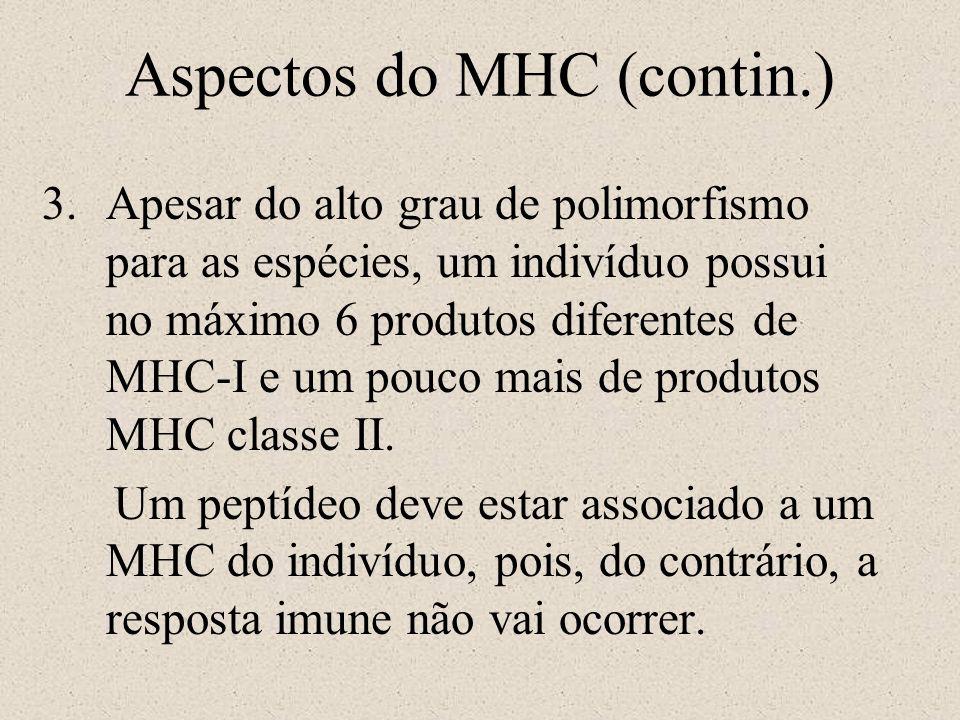 Aspectos do MHC (contin.)