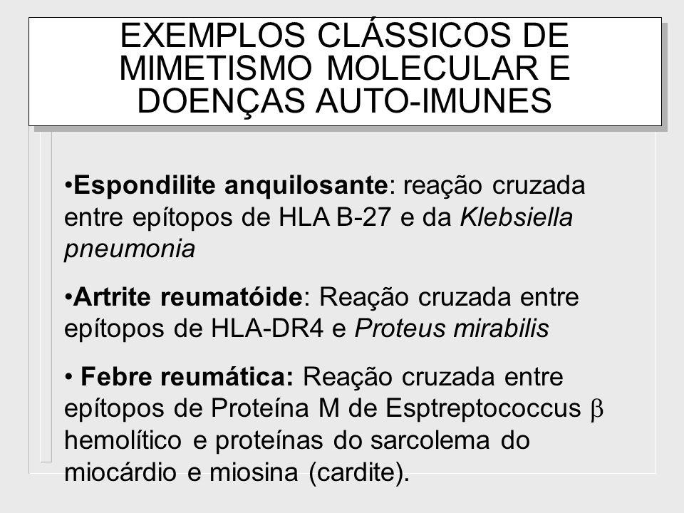 EXEMPLOS CLÁSSICOS DE MIMETISMO MOLECULAR E DOENÇAS AUTO-IMUNES