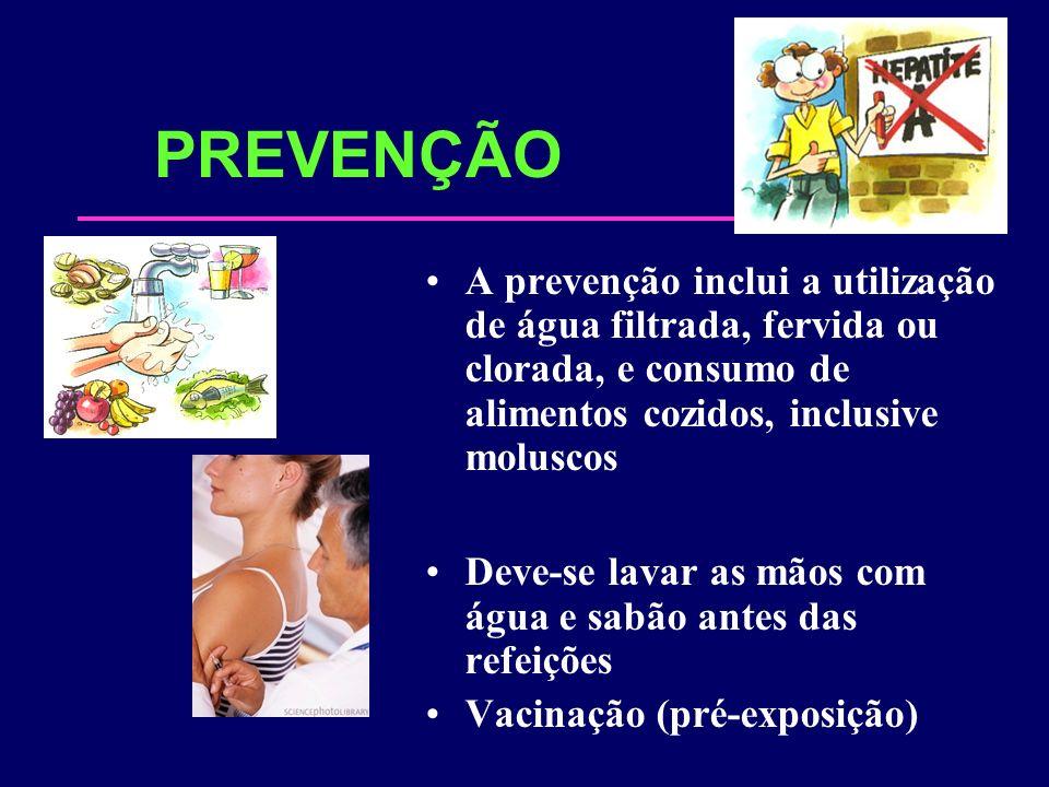 PREVENÇÃO A prevenção inclui a utilização de água filtrada, fervida ou clorada, e consumo de alimentos cozidos, inclusive moluscos.