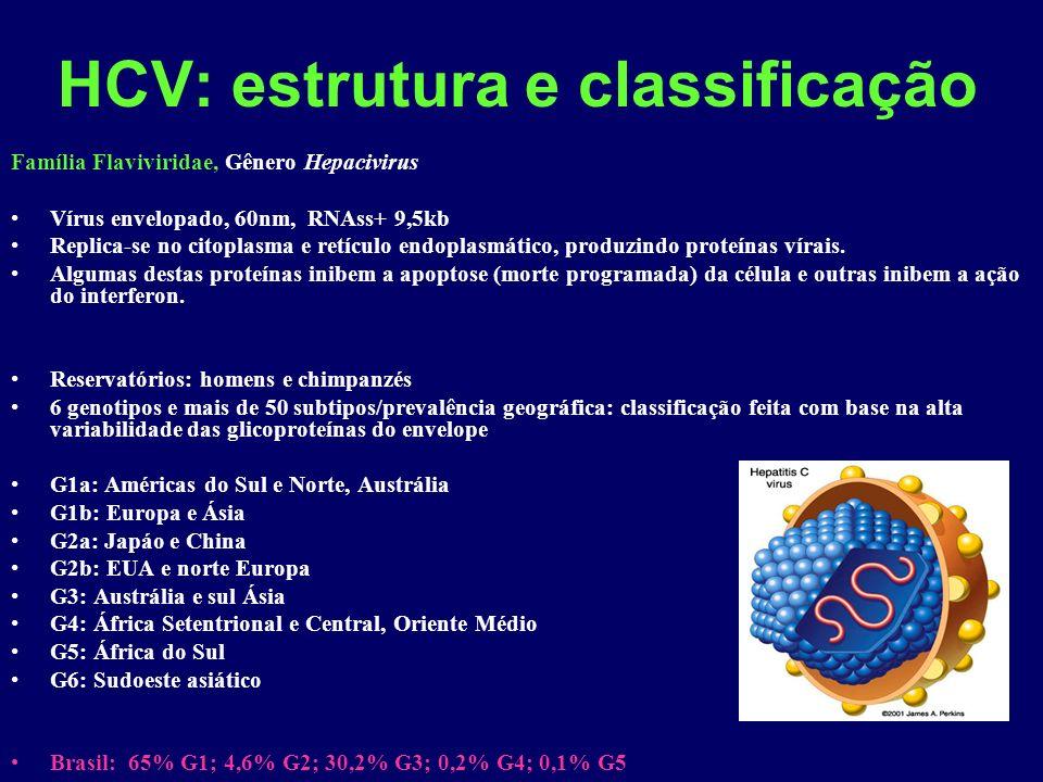 HCV: estrutura e classificação