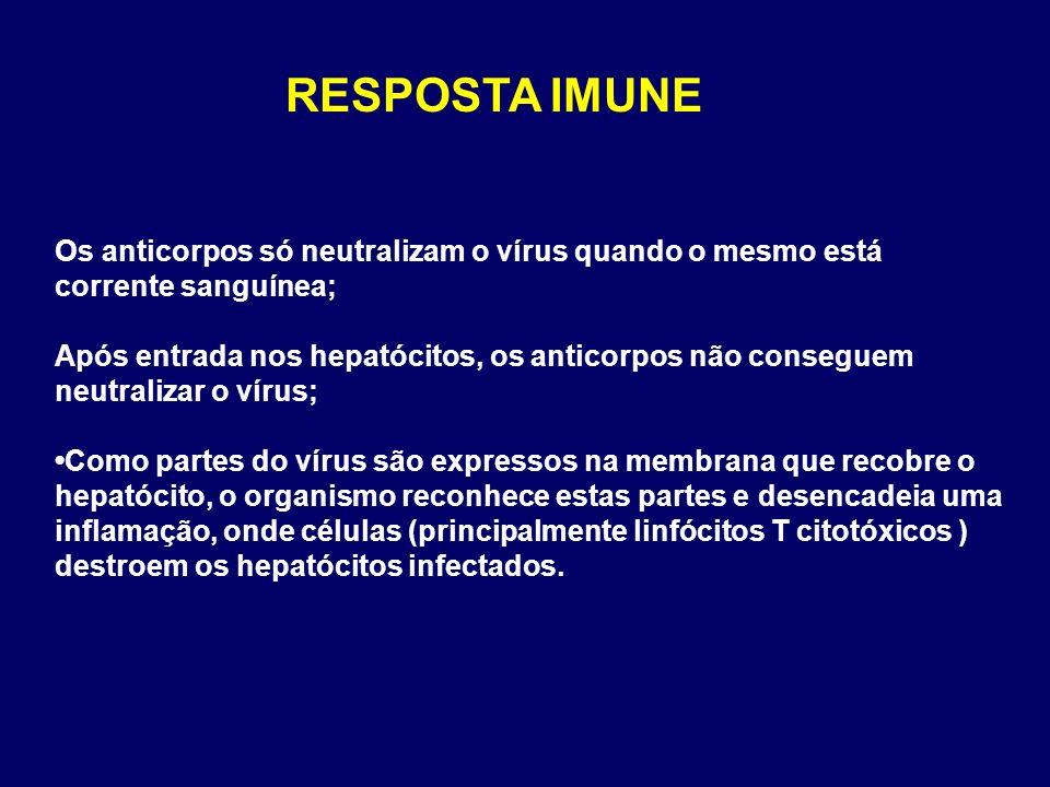 RESPOSTA IMUNE Os anticorpos só neutralizam o vírus quando o mesmo está corrente sanguínea;