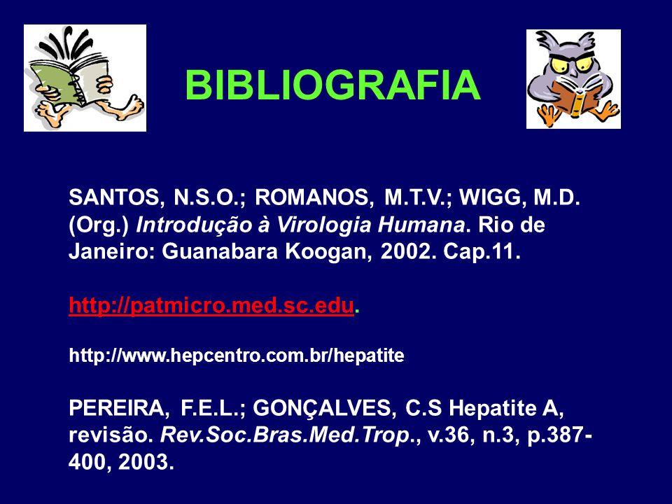 BIBLIOGRAFIA SANTOS, N.S.O.; ROMANOS, M.T.V.; WIGG, M.D. (Org.) Introdução à Virologia Humana. Rio de Janeiro: Guanabara Koogan, 2002. Cap.11.