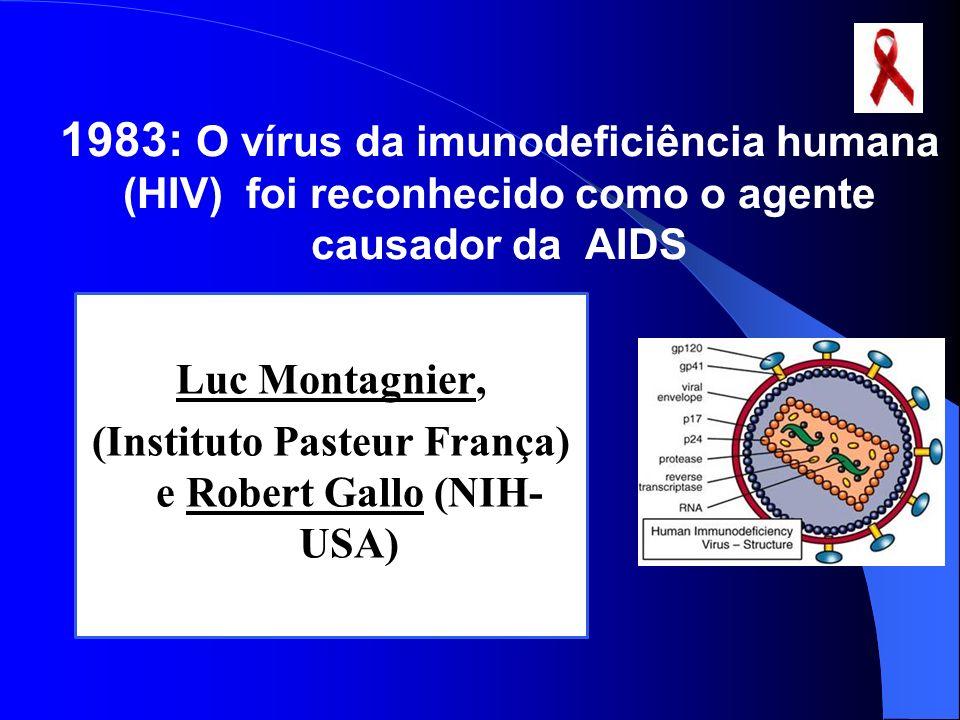 (Instituto Pasteur França) e Robert Gallo (NIH-USA)