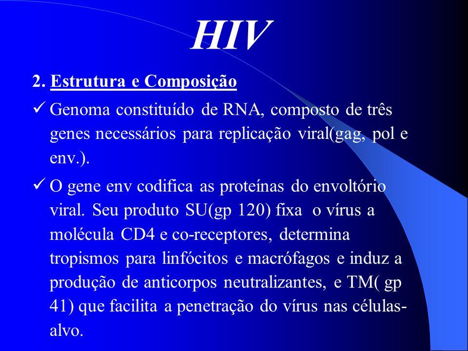 HIV 2. Estrutura e Composição