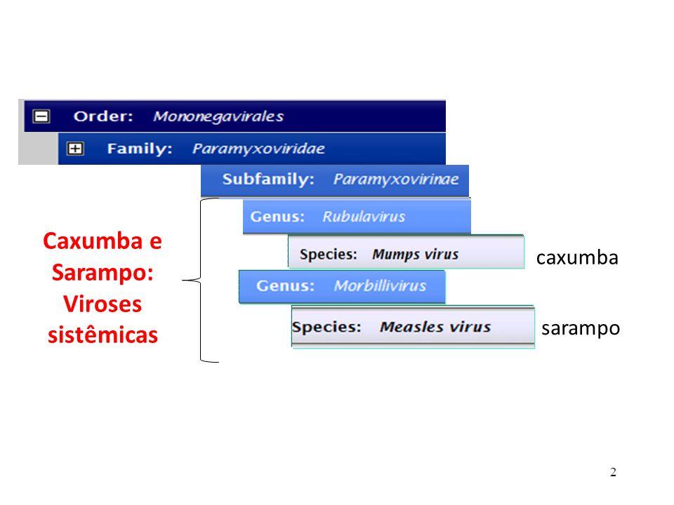 Caxumba e Sarampo: Viroses sistêmicas
