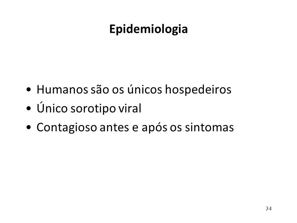 Epidemiologia Humanos são os únicos hospedeiros. Único sorotipo viral.