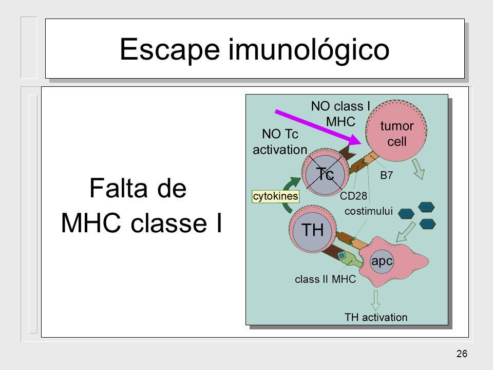 Escape imunológico Falta de MHC classe I