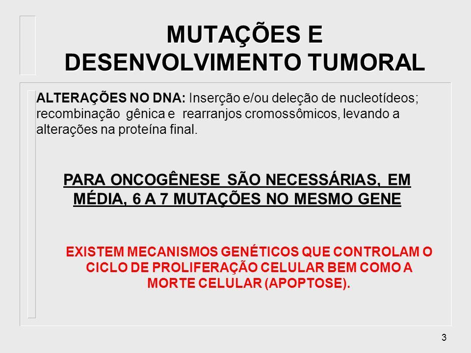 MUTAÇÕES E DESENVOLVIMENTO TUMORAL