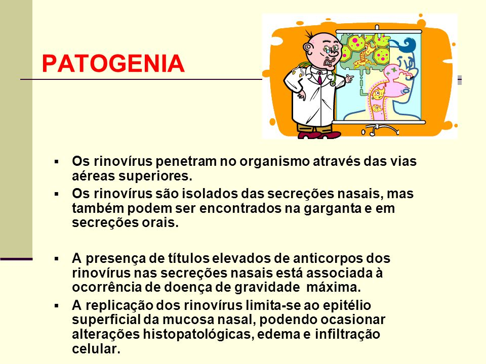 PATOGENIA Os rinovírus penetram no organismo através das vias aéreas superiores.