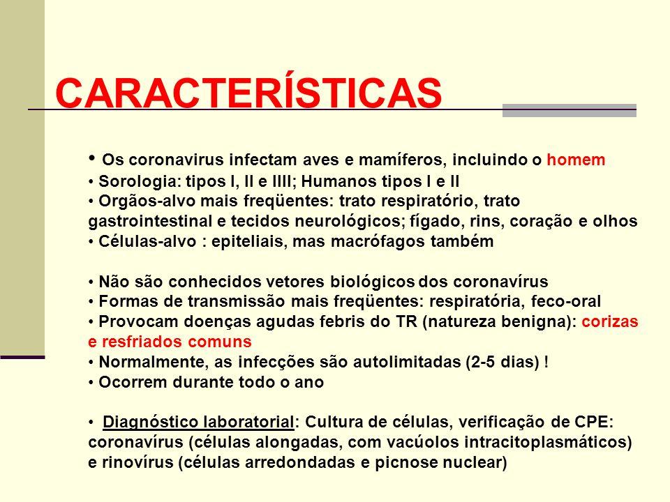 CARACTERÍSTICASOs coronavirus infectam aves e mamíferos, incluindo o homem. Sorologia: tipos I, II e IIII; Humanos tipos I e II.