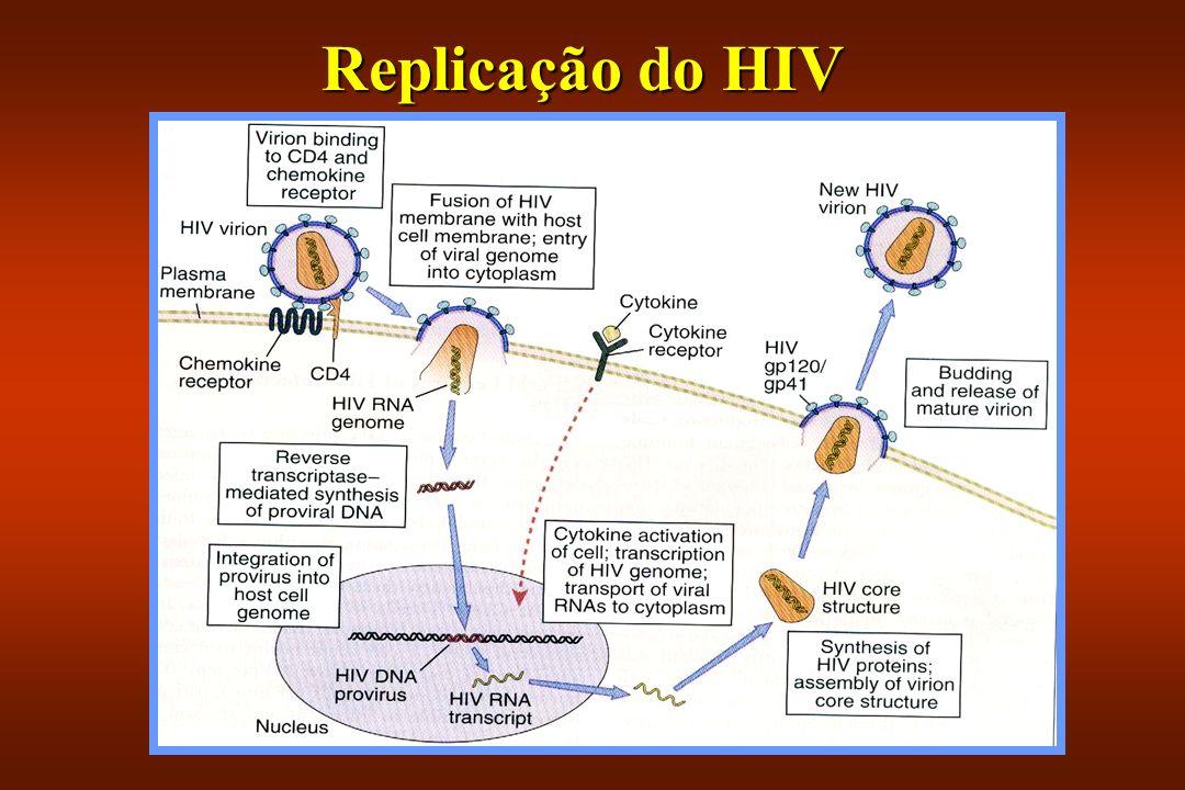 Replicação do HIV