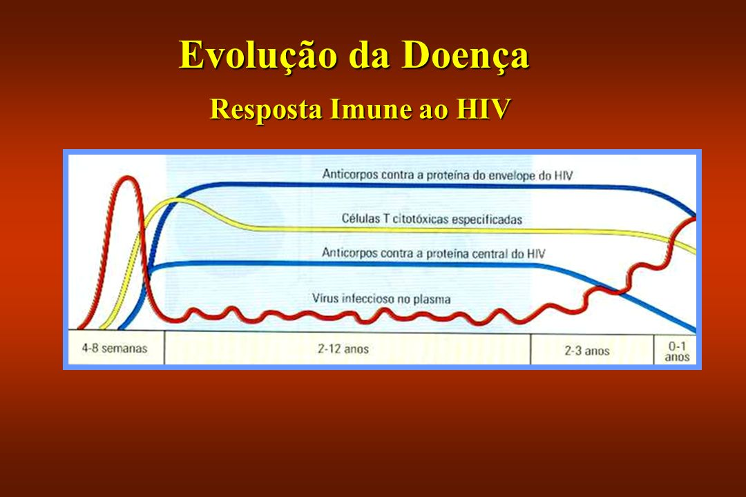 Evolução da Doença Resposta Imune ao HIV