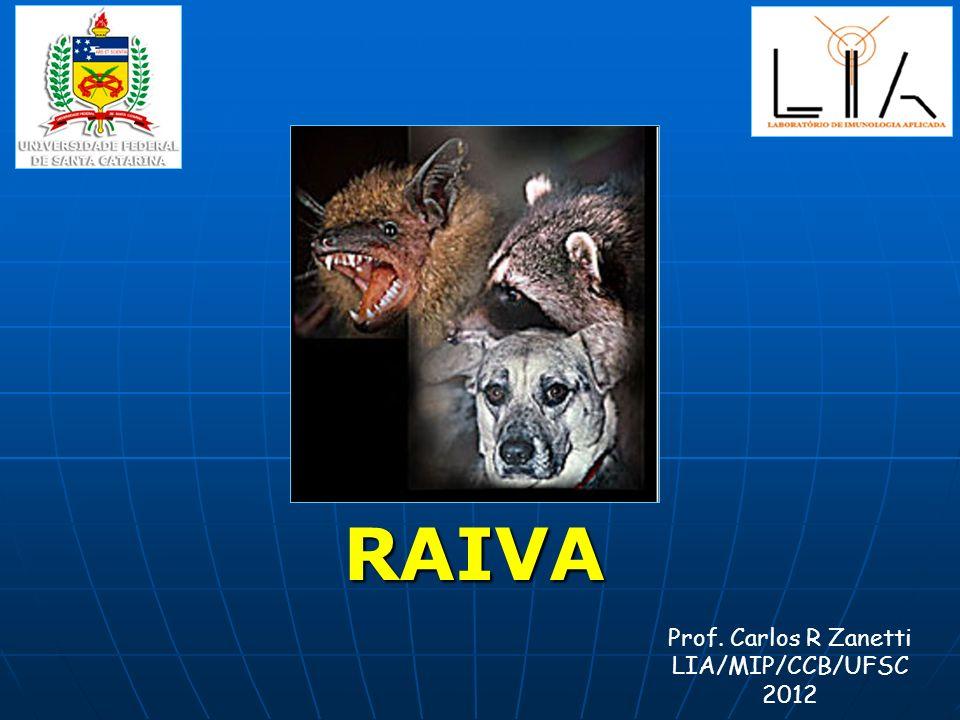 RAIVA Prof. Carlos R Zanetti LIA/MIP/CCB/UFSC 2012