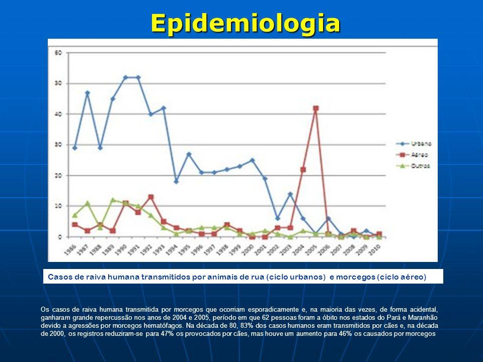 Epidemiologia Casos de raiva humana transmitidos por animais de rua (ciclo urbanos) e morcegos (ciclo aéreo)