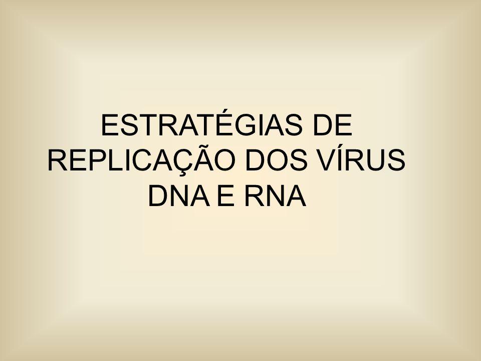 ESTRATÉGIAS DE REPLICAÇÃO DOS VÍRUS DNA E RNA