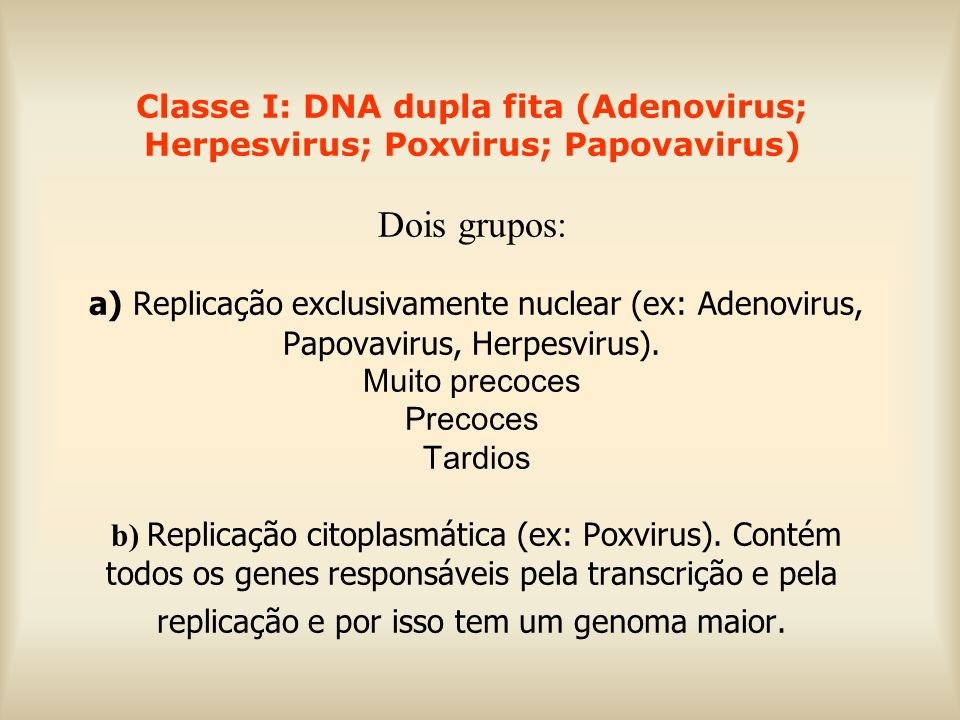 Classe I: DNA dupla fita (Adenovirus; Herpesvirus; Poxvirus; Papovavirus) Dois grupos: a) Replicação exclusivamente nuclear (ex: Adenovirus, Papovavirus, Herpesvirus).
